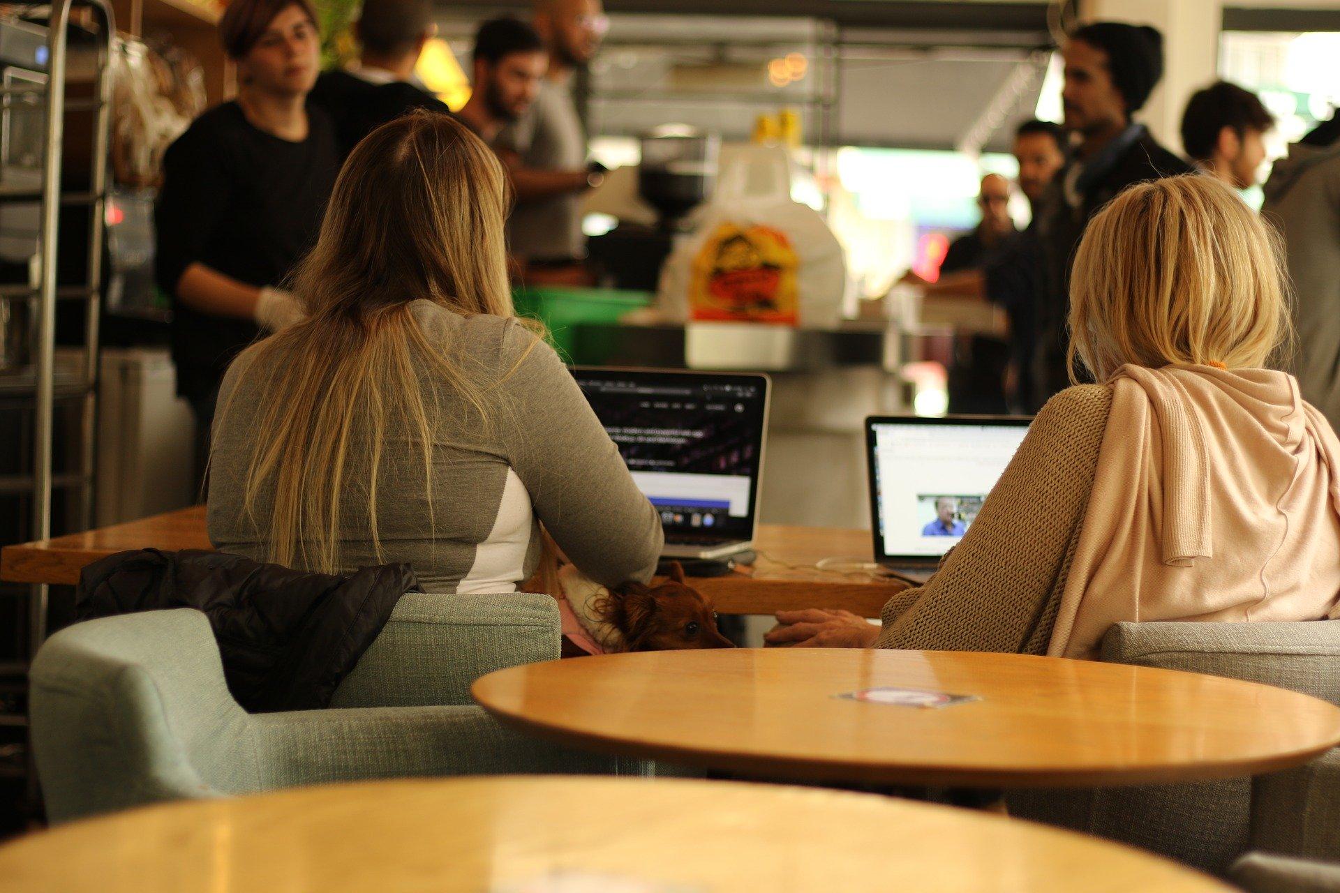 Digitalisierung der bayerischen Hochschulen auf solide Beine stellen